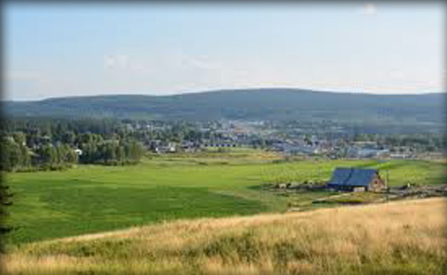 100 Mile Ranch - Hay Sales - 100 Mile House - South Cariboo - British Columbia